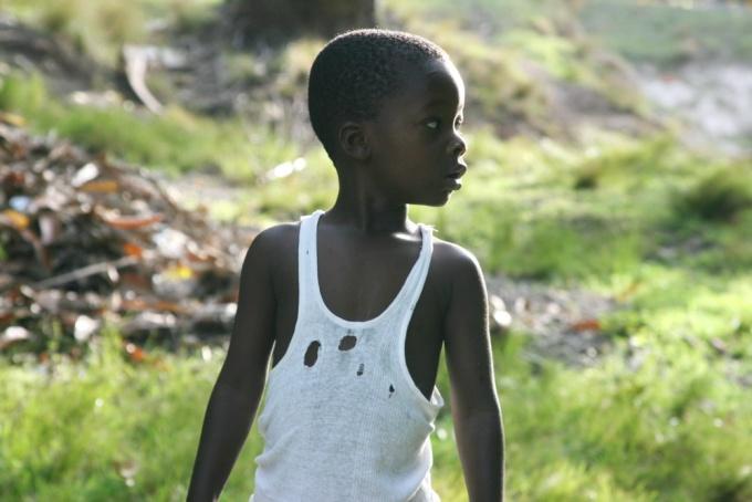 Curiosity. Ile-à-Vache, Haiti