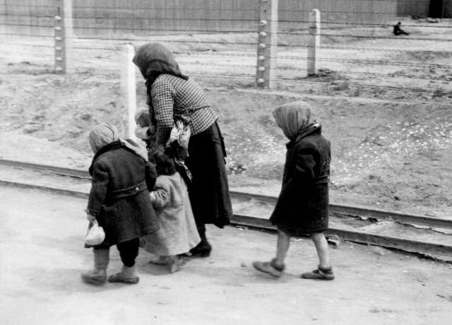 Auschwitz-album-119