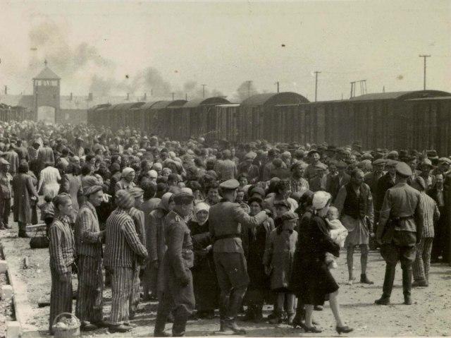 Auschwitz-Album-12-baby