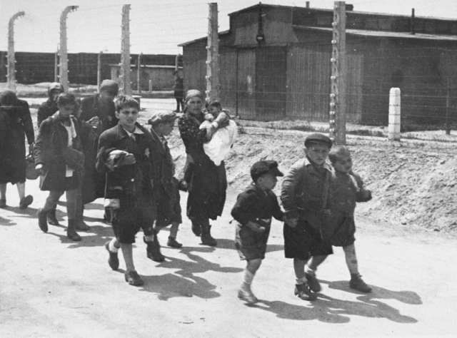 auschwitz-album-122-children-women-gas-chambers