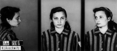 prisoner-6
