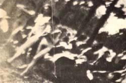 sonderkommando-5