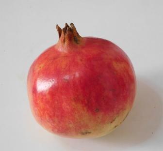 hch13-recipe01pomegranate