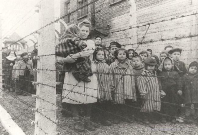 children-survivors-auschwitz
